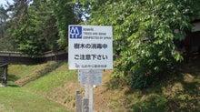 津軽徒然-日課の散歩