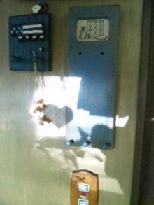 オカメインコのももちゃんと花教室と旅日記-120626_082059.jpg