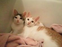 PFL★MIKIのブログ-2012062721500000.jpg