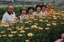 $福島県在住ライターが綴る あんなこと こんなこと-20120624-1花卉農家さん