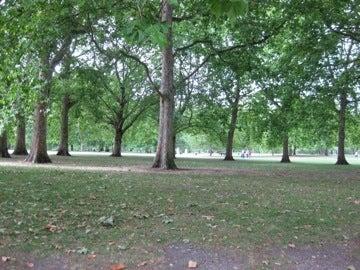 グリーンパーク2