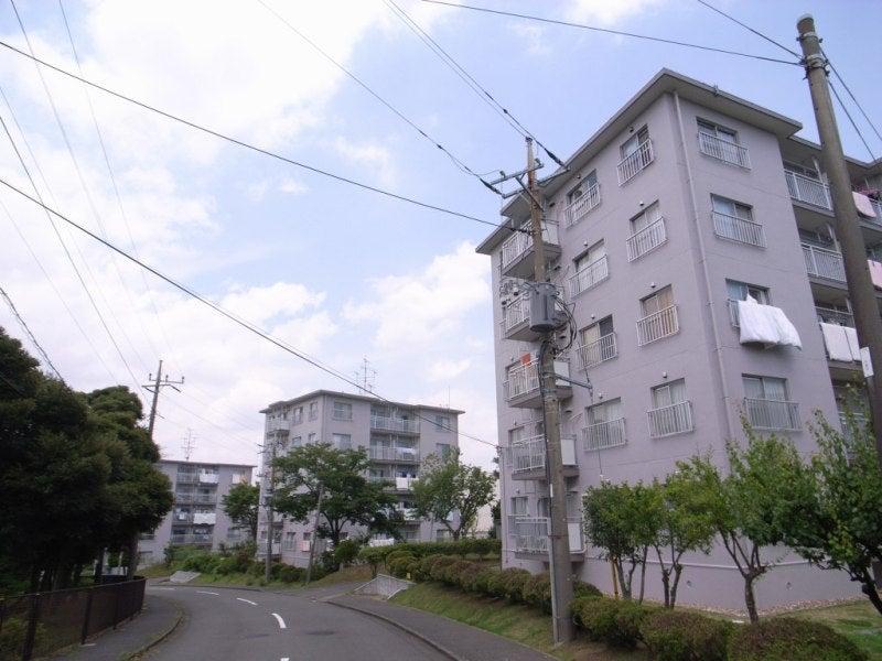 ぽむ吉マニアックス-ポイントハウス005