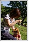 $ペットと話す アニマルコミュニケーション 人と動物の健康