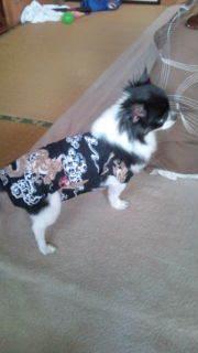 yumia4713さんのブログ-20120630104459.jpg