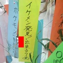 千葉県産のキャベツの…