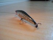 【ヨッさんの岩魚釣り漫遊記】-CA3I0534.jpg