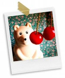 コトリさんの小さな帽子-cherry_01