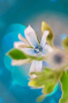 青いイメージ