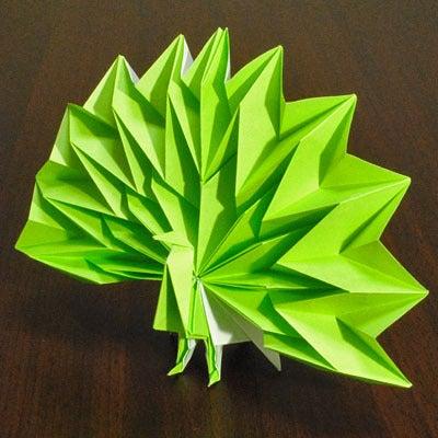 簡単 折り紙 折り紙 孔雀 折り方 : ameblo.jp