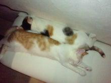 PFL★MIKIのブログ-2012071320490000.jpg
