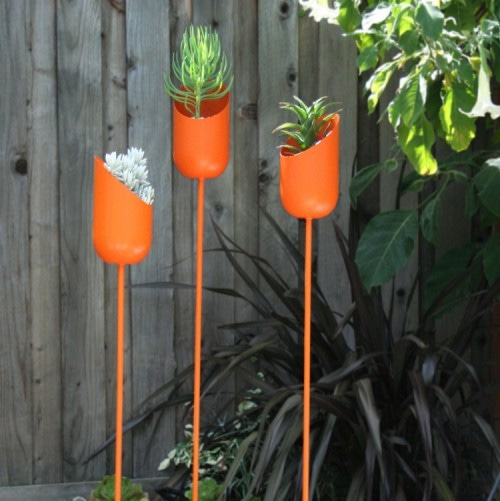 多肉植物のおしゃれなアレンジ・アイデア