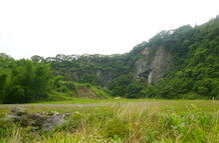 ウーパールーパー ぴんぴんのくらし-火葬場付近の風景