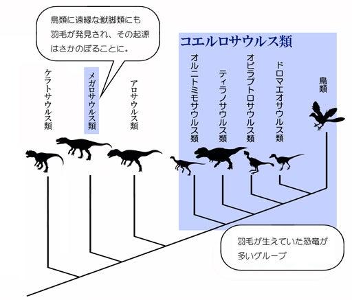 川崎悟司 オフィシャルブログ 古世界の住人 Powered by Ameba-獣脚類の系統図と羽毛