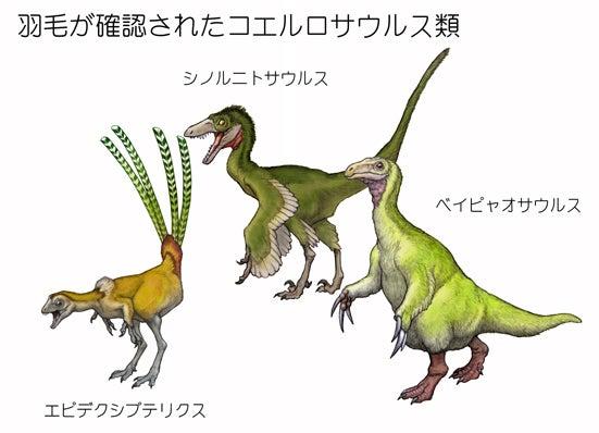 川崎悟司 オフィシャルブログ 古世界の住人 Powered by Ameba-羽毛が確認されたコエルロサウルス類たち