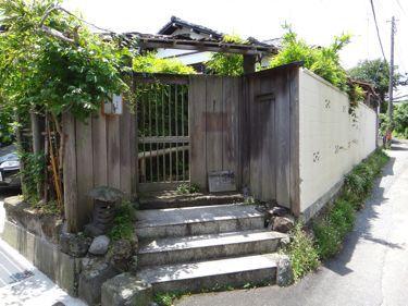 横浜発 驢馬人の美食な日々-Wasabi