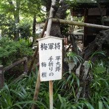 陰陽師【賀茂じい】の開運ブログ-1342572425299.jpg
