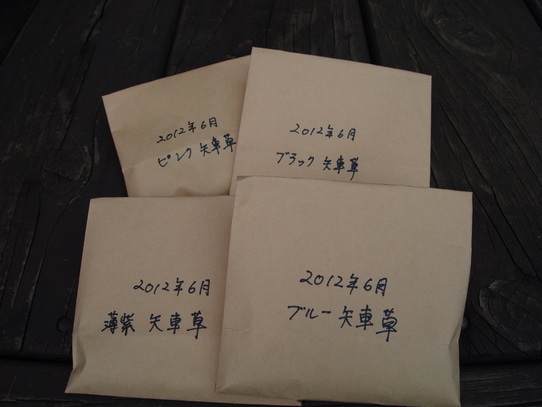 キヨミのガーデニングブログ 長澤淨美のアメブロオフィシャルブログPowered by Ameba