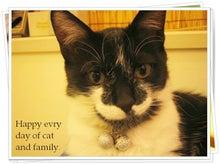 $それでも私は、生きています。-Happy evry day of cat and family-