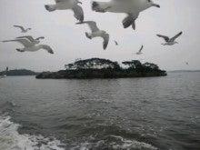 心の風事務局のブログ