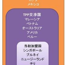 TPPという大きな決…
