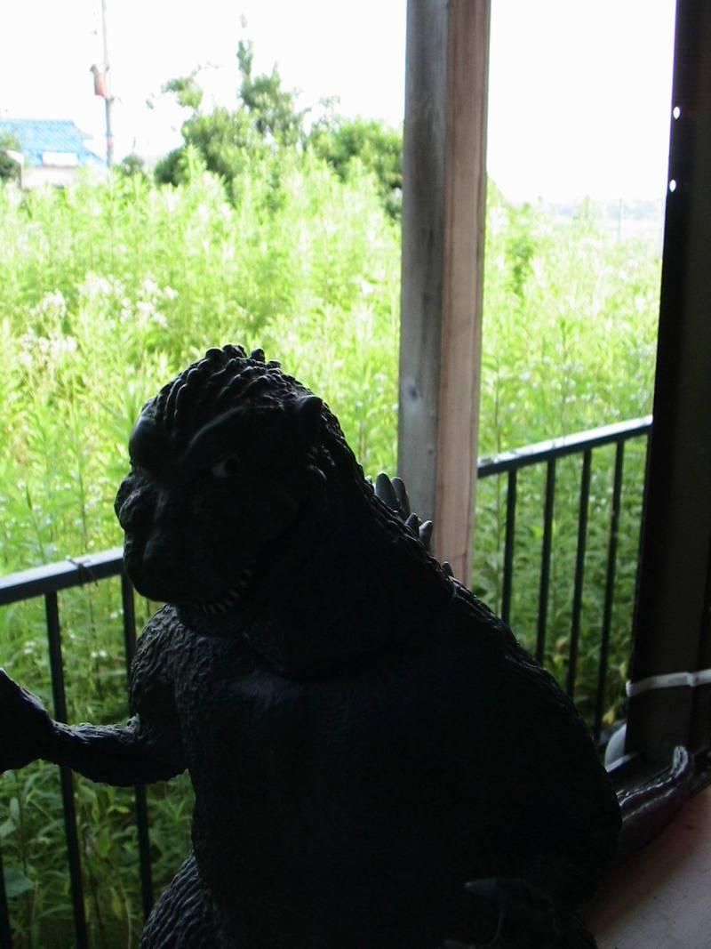 おまけ道@琵琶湖畔で実家生活♪ポテチンっ♪-29129725