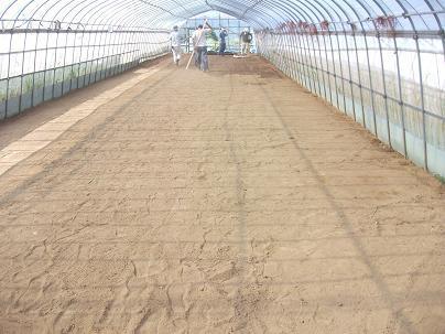 農業のトータルコーディネータ  イノウエ農商事のブログ-07262
