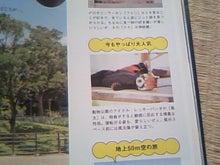 葵と一緒♪-TS3P0080.jpg
