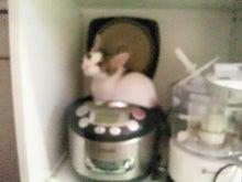 PFL★MIKIのブログ-2012072622020000.jpg