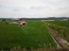 よねざわ農園のブログ【北海道名寄市風連町】