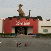 恐竜に怯え逃げる燦燦