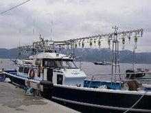 日本海・北陸・若狭・福井・敦賀・色浜の海釣り、船釣り、竹宝丸の最新釣果
