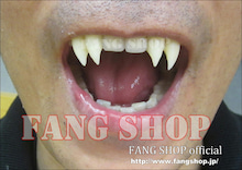FANG SHOP オフィシャルブログ-4本牙(連結Type)