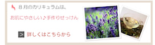 ★足立・埼玉・千葉★子連れで習い事なら★暮らしステキセミナー&カルチャー★