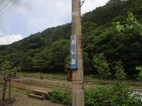 歩王(あるきんぐ)のLet'sらGo!-c08046