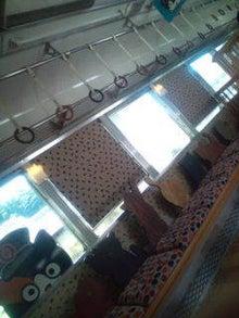ウサ猫とポチャ猫-20120806120218.jpg