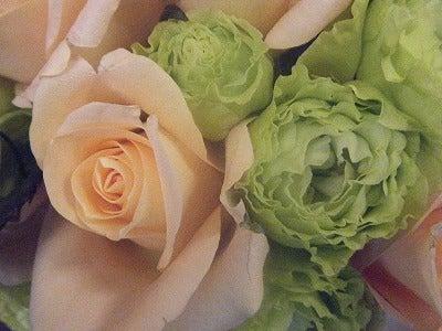 呼吸する様に花を仕入れ、取り合わせる。 花禅-1208062