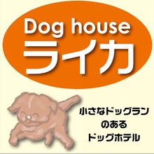 $dog house ライカの日常                       -ドッグホテル&ショップ ライカ