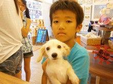 ペットショップ♪プチマリア福井店のHAPPYブログ