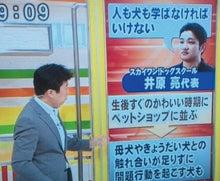 家庭犬しつけインストラクター井原亮のお仕事日記