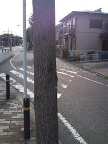 川崎の社会保険労務士事務所・オフィス社労士!です-CA3D0192.jpg