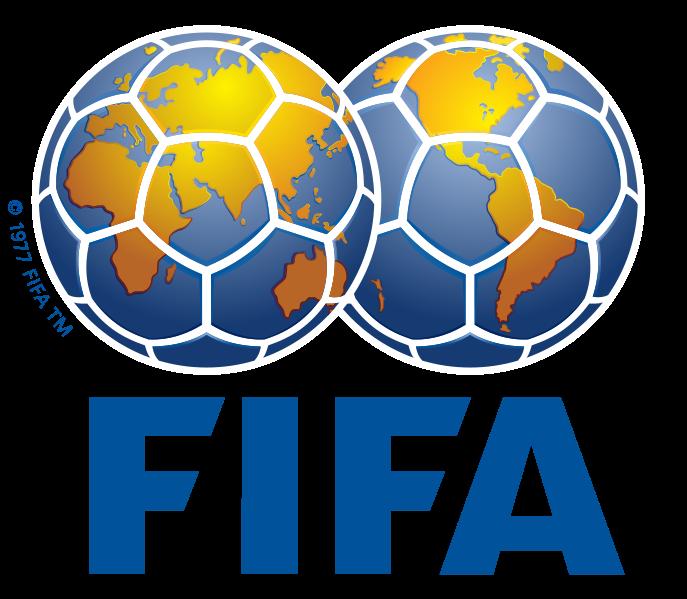 サッカー日本代表 FIFA 国際サッカー連盟