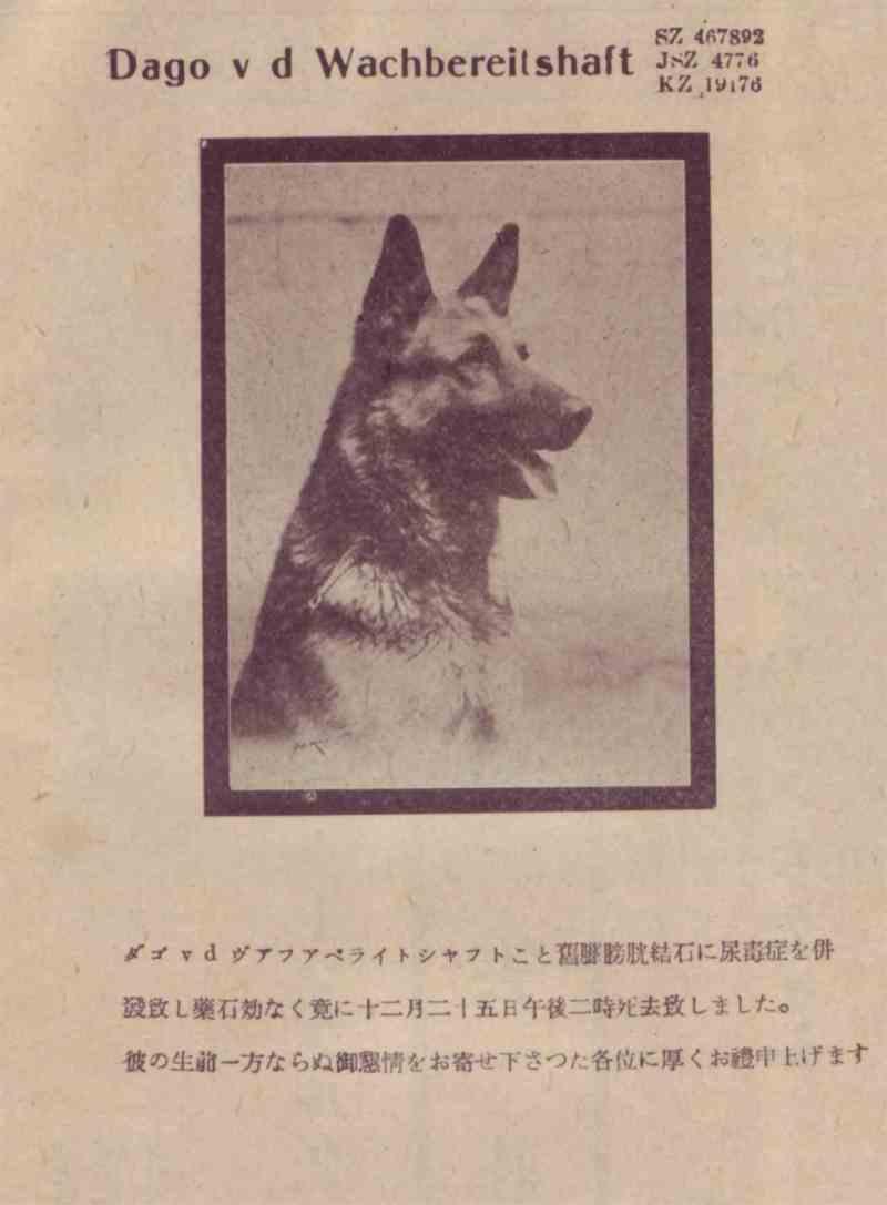 帝國ノ犬達-ダゴー