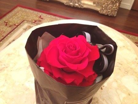 美人になる方法-バラ