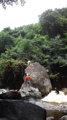 とある登猫ののぼのぼ日記-120805_1407~01.jpg