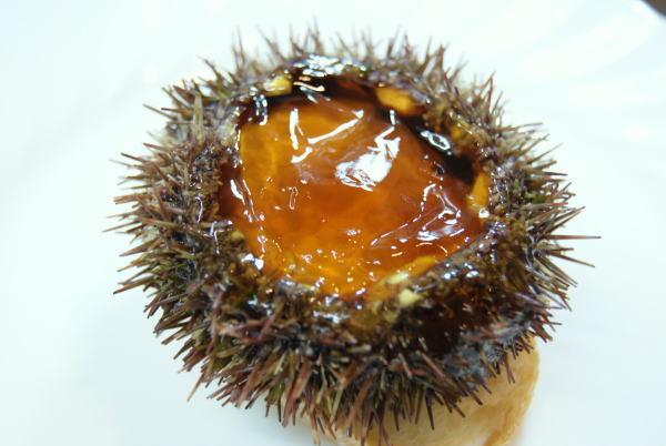 食べて飲んで観て読んだコト+レストラン・カザマ-殻付きウニ