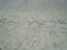 Soyvegeスタッフのブログ-DSC_0138.jpg