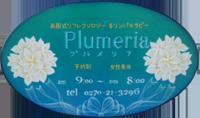 群馬県伊勢崎市のリンパセラピー&フィトセラピーサロン Plumeria ~プルメリア~