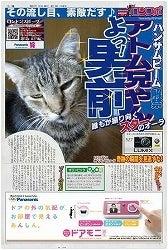 沢田知佳のアトムとちゃ夢ツンデレ日記