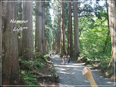Nagano Life**-がんばるぞ