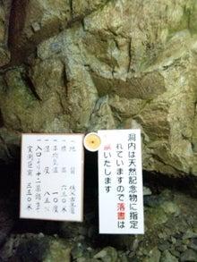 オカメインコのももちゃんと花教室と旅日記-120820_151121.jpg